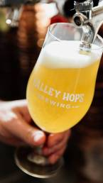 Valley Hops Brewing Craft Beer On Tap